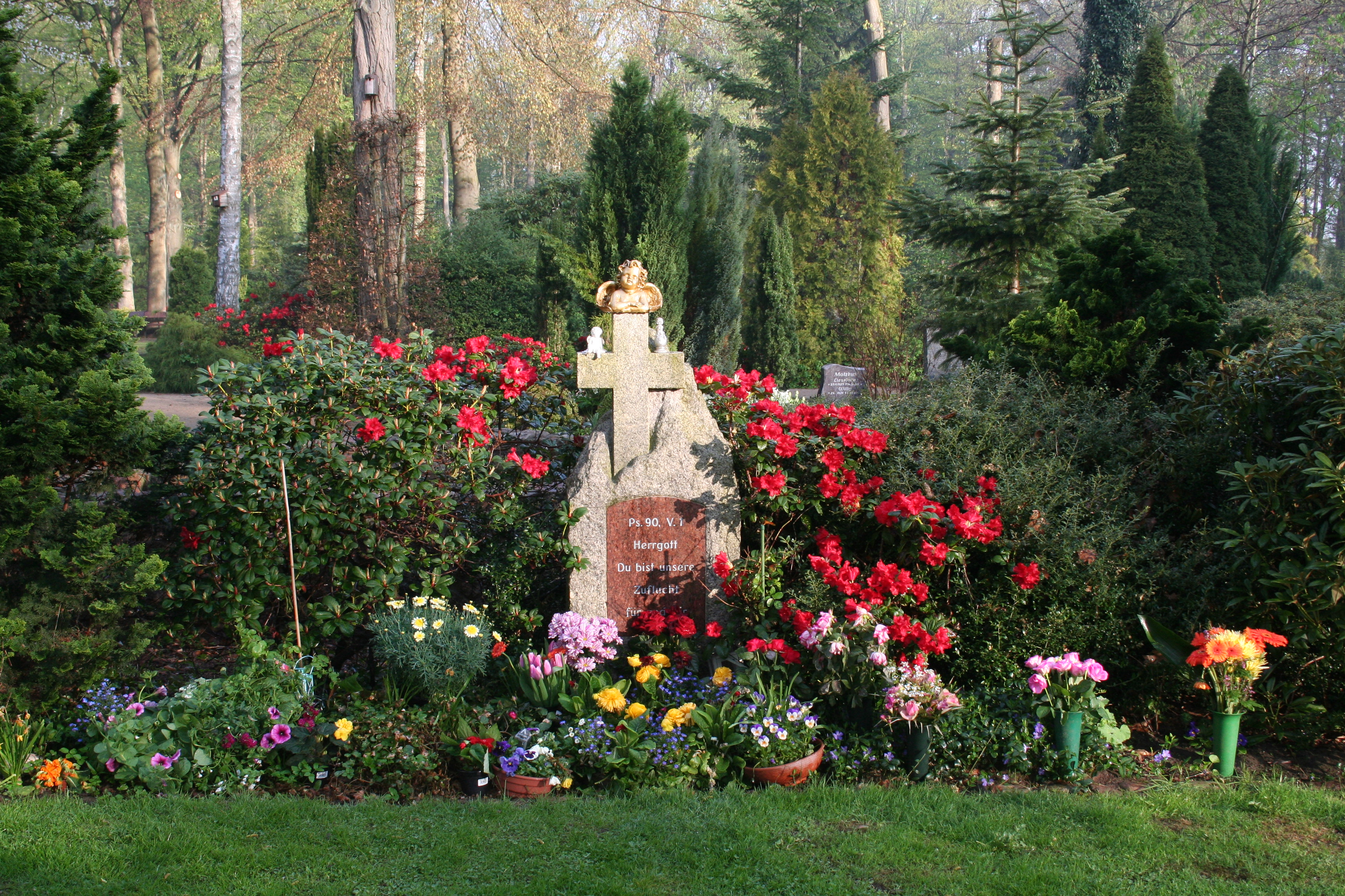 Friedhof 119